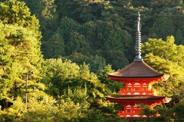 <p>Kiyomizu Temple Tower</p>