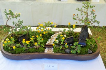 <p>The bonsai mums in this pot form the basis of a miniature garden scene</p>