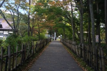 <p>The beautiful path leading to the temple</p>