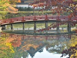 Dark orange leaves lean over a red bridge in a shrine