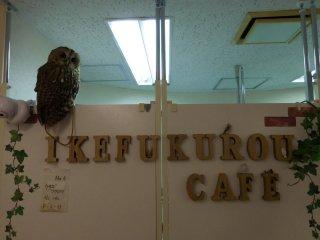 Ikefukurou cafe