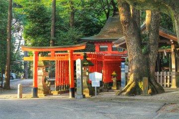 <p>Hatsutatsuinari Shrine</p>