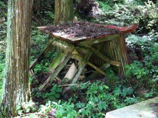 Ngôi đền được bao phủ trong cây cối. Rất có thể nó đã bị phá huỷ trong một trận mưa lớn