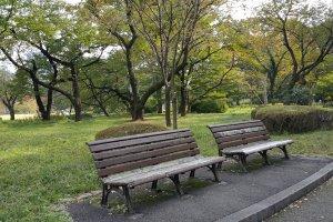 풍경에녹아 있는해묵은 나무 벤치가 소리 없이 이리 오라 손짓하는 듯하다.
