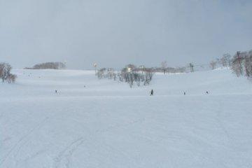 <p>Ski slopes at Niseko resort</p>
