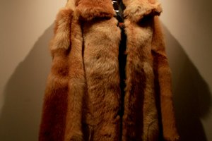Fur coat made from dogs