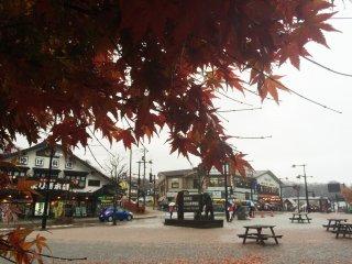 Momiji merah menerangi hari hujan di bulan November.