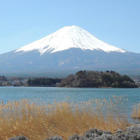 Kawaguchiko, Danau dari Gunung Fuji