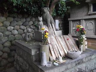 Могила на кладбище домашних питомцев