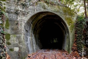 A defunct railway tunnel located close by to the start of this walk