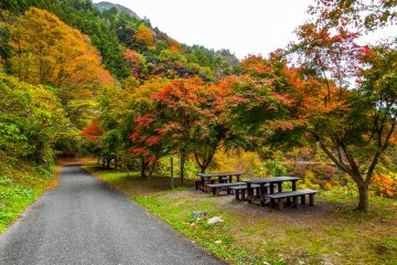 <p>Yasumi Dokoro, a rest area towards the latter part of the hike</p>