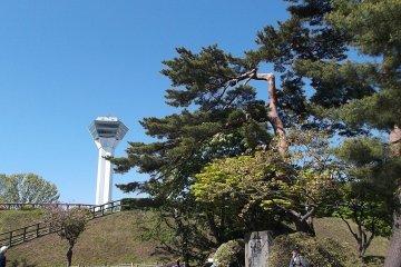<p>Tower</p>