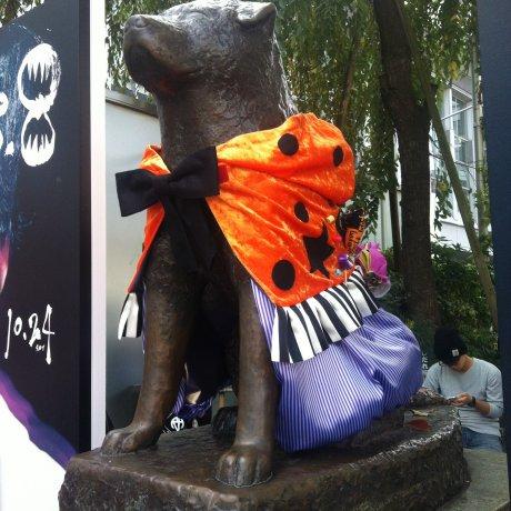 Halloween ซักครั้งที่ชิบูยะ