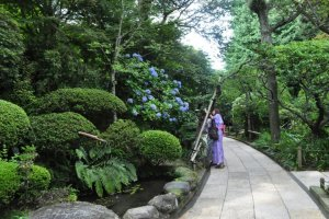 Admiring the landscaping in the Hokokuji entrance path