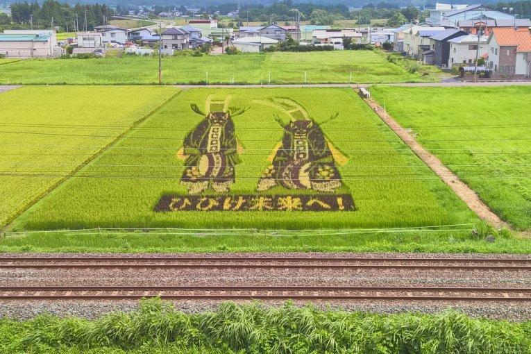 Di sản gạo đen