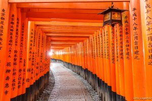 Fushimi Inari-taisha, Osaka
