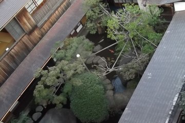 <p>Смотря вниз на сад Асакуры</p>