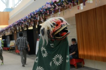 <p>You can even witness a lion dance</p>