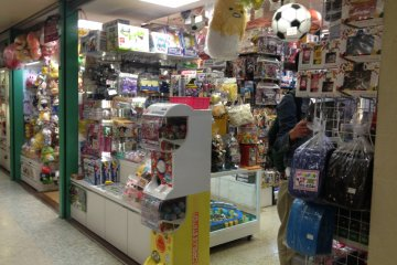 <p>One of the independent hobby shops, showcasing various kinds of items.</p>