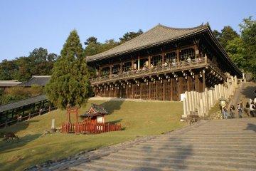 On the side of Mount Wakakusa