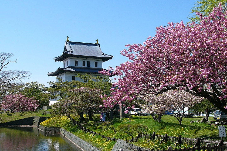 城堡庭院是日本前100名樱花景点之一