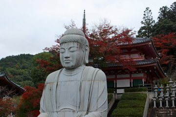 <p>A red maple tree provides a beautiful backdrop for the seated Buddha.</p>