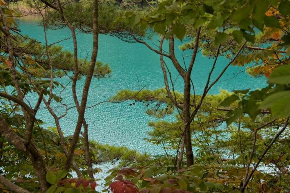 A turquoise pond