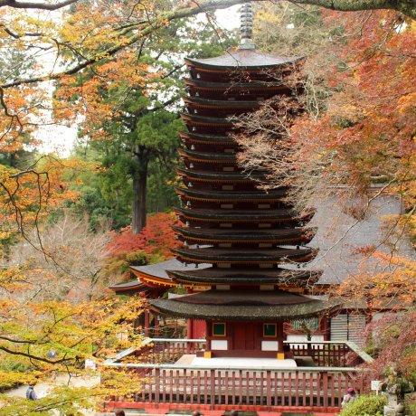 Tanzan Shrine in Nara