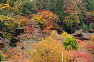 Tanzan Shrine from the overlook
