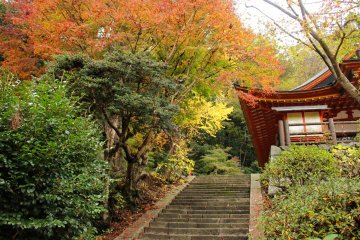 <p>The stairs to the Kanden Hall and the Hiei Shrine Altars</p>