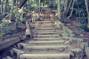 If you see stairs, that's a good sign! You're almost to the top.