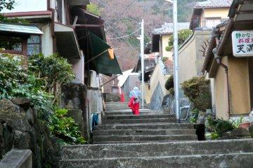 <p>A stairway alley leading toward Hozanji Temple</p>
