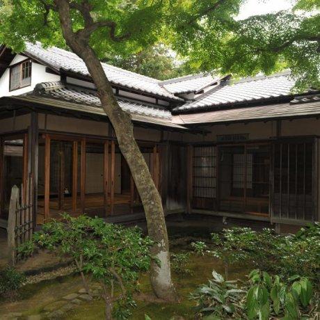 Japanese Tea Experience in Odawara
