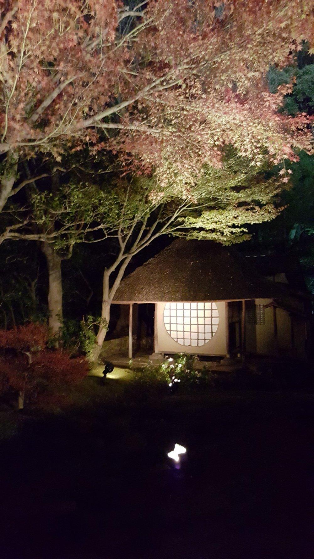 Rumah minum teh dihiasi warna-warna musim gugur.