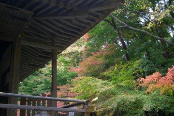 Explore the Gardens of  Ohara Village in Autumn