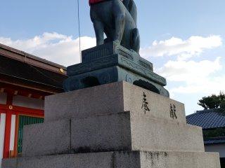 Uma das raposas guardiãs do santuário