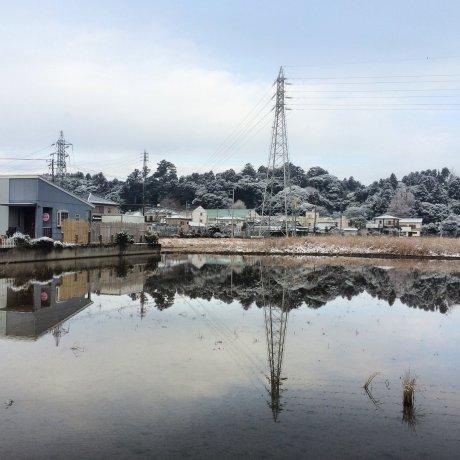 Tuyết rơi nhẹ tô điểm bờ biển Chiba