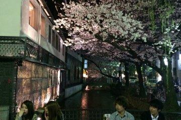 京都市中心处