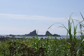 Manazuru and its Lovely Cape
