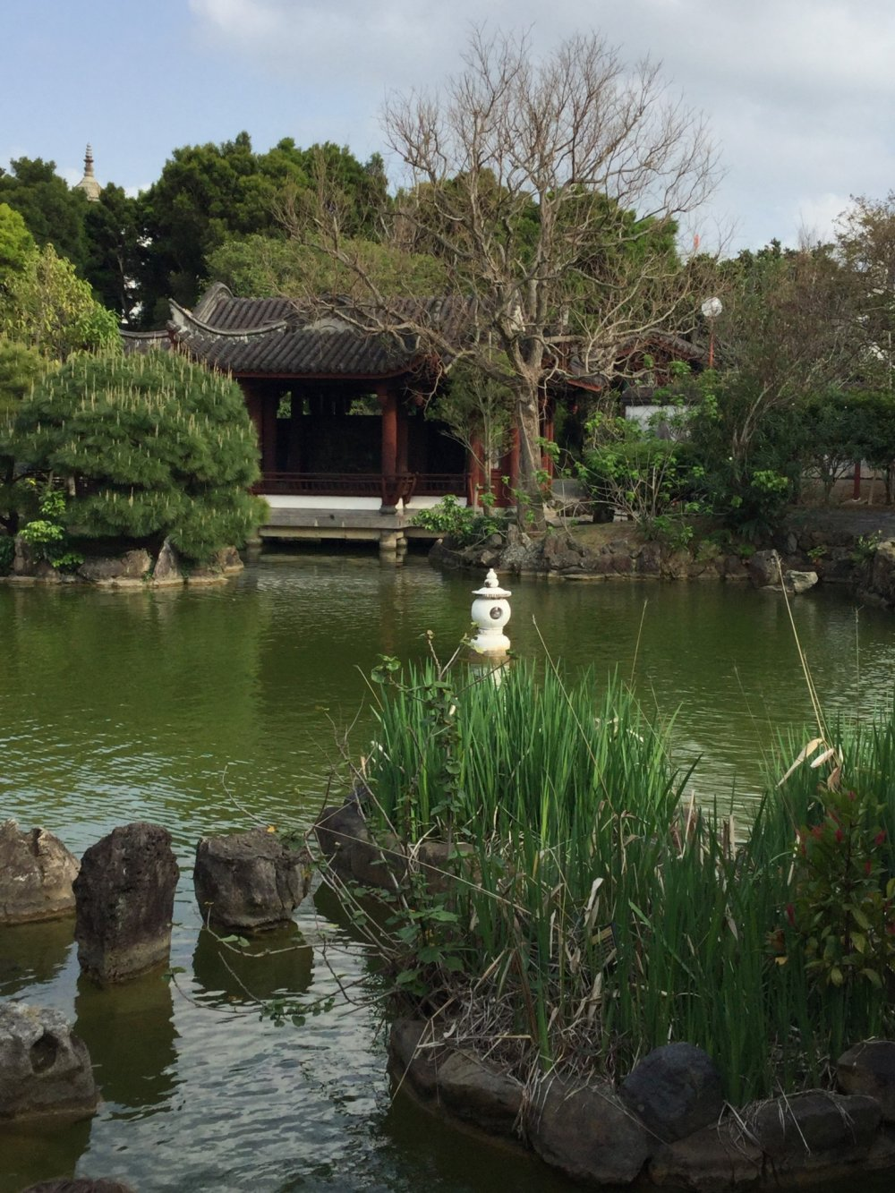 วิวทางเข้าสวน มองจากฝั่งตรงกันข้ามสระน้ำ