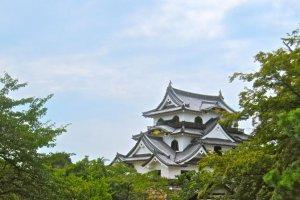La tour du château de Hikone au dessus des arbres dans le Honmaru
