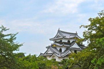 ปราสาทฮิโกเนะ
