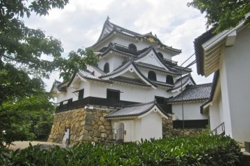 Hikone Castle tower from the Honmaru