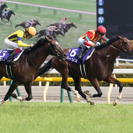 JRA日本赛马