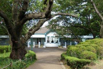 여름의 야마테공원