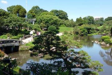 Пестрящий зеленью Парк Суидзэндзи летом