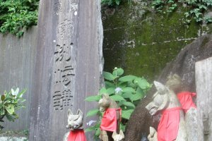 Wolves and wild dogs are common sights at Japanese mountain temples