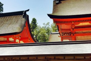 Oyamazumi Shrine buildings