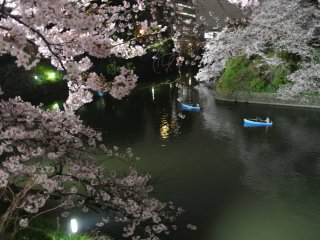 Lots of row boats in Chidorigafuchi Moat even at night