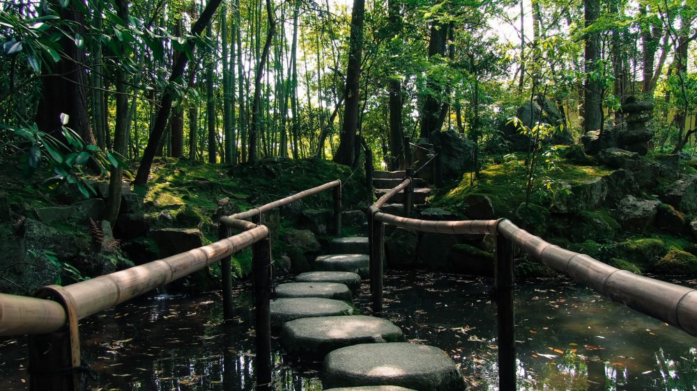 A path of stones to skip your way across the pond.